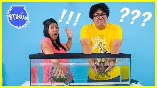 Girls Vs. Boys WHAT'S IN THE BOX CHALLENGE Underwater edition!