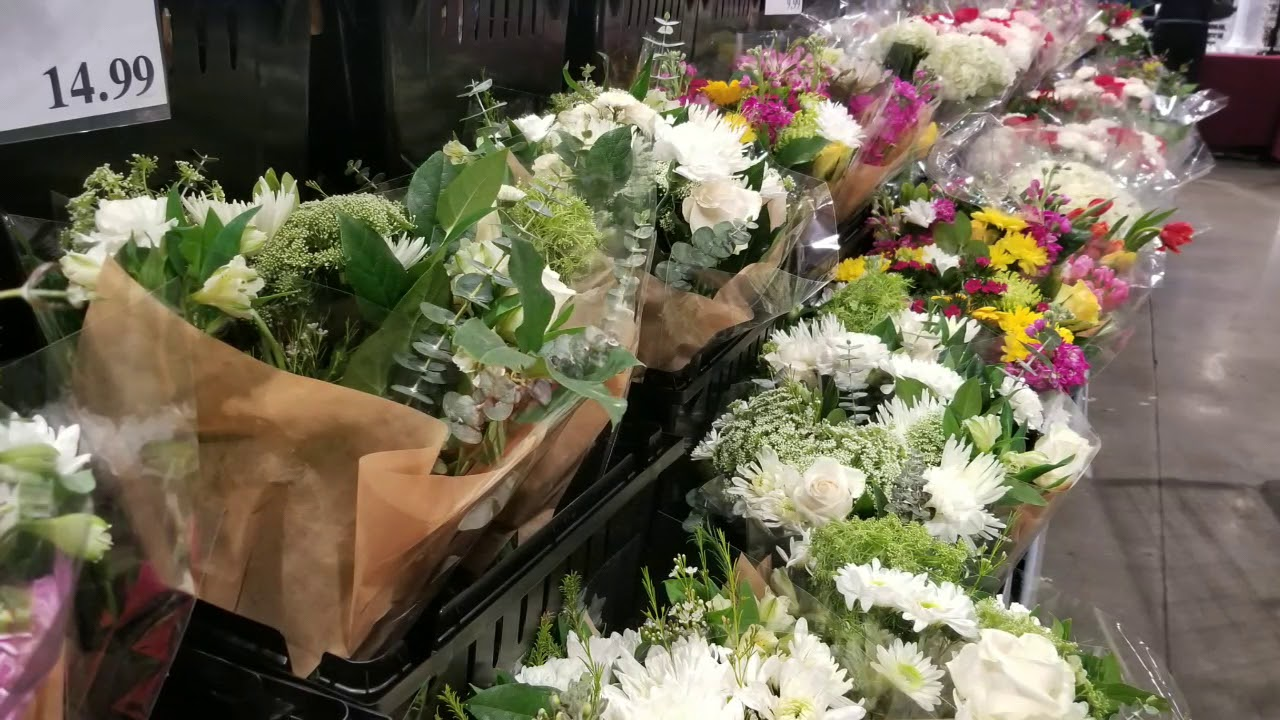 Costco! Flowers for Valentine\'s Day $9 - $49!!! - YouTube