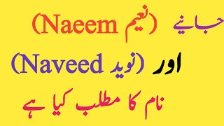 Naeem And Naveed Name Meaning In Urdu And Lucky's Number