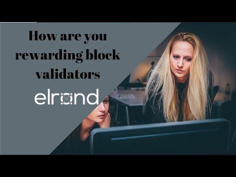 Elrond Network - How Are You Rewarding Block Validators