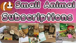 Small Animal Pet Subscription Boxes (Guinea Pig, Hamster, Rabbit) thumbnail