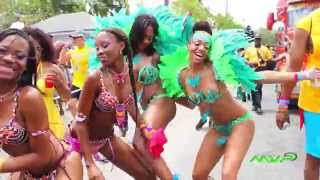 Jamaica Carnival Road March 2014