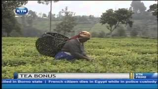 Tea farmers decry low bonuses