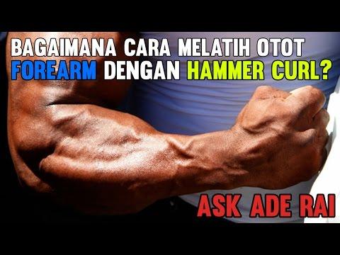 Bagaimana Cara Melatih Otot Forearm?