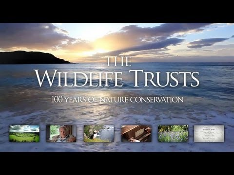100 years of nature conservation