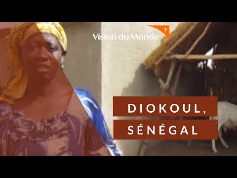 Bienvenue dans notre programme de Diokoul au Sénégal