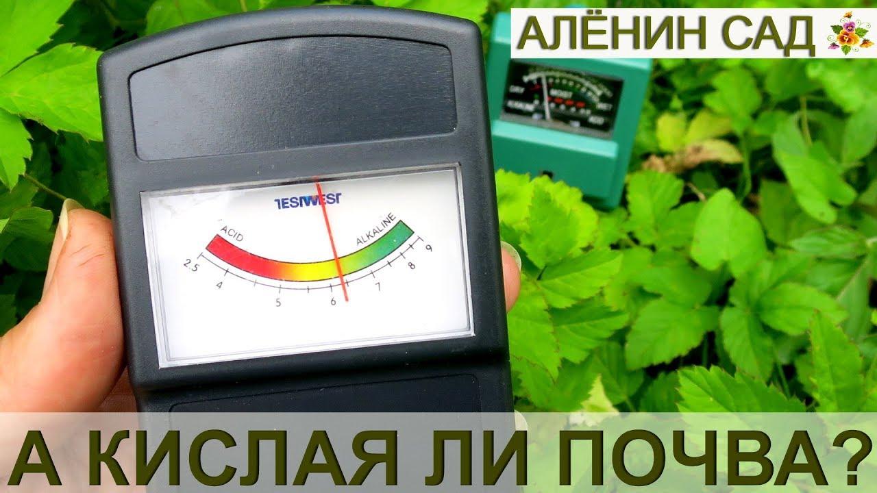 измерители кислотности почвы своими руками