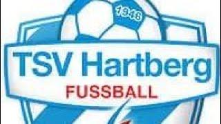 FIFA 19 Karriere TSV #001 Hartberg, da bin ich daheim