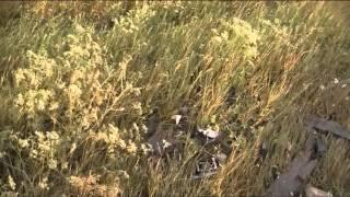 ДТП в Крыму. Один погиб, пятеро в больнице(2 июля, на автодороге Черноморское-Евпатория россиянка на автомобиле «Lexus RX 300» врезалась в «Seat». Один челове..., 2013-07-03T09:57:37.000Z)