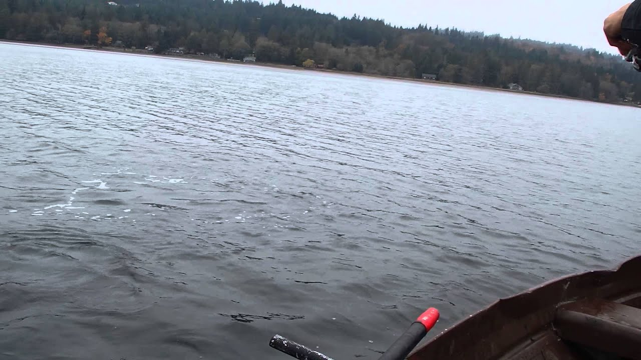 Puget sound salmon fishing chum love jigs youtube for Fishing puget sound