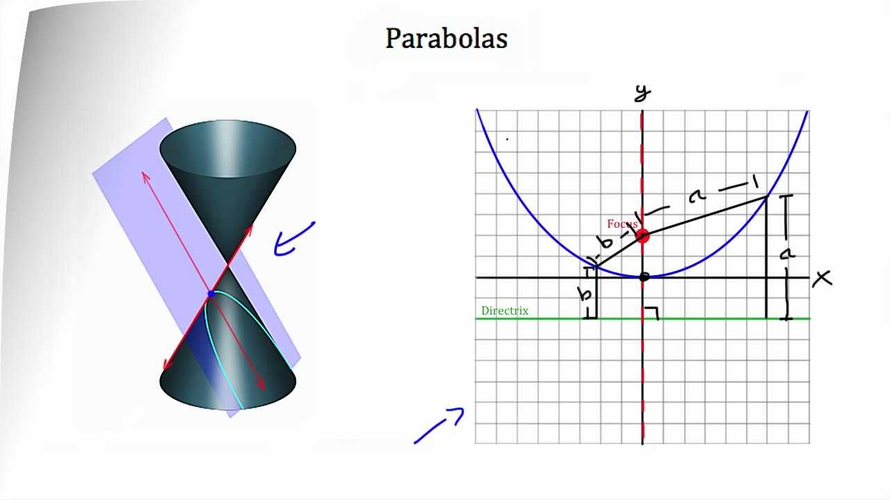 conic sections 111 conic sections conic sections, or more simply conics, are plane figures obtained by intersecting a plane with a right circular cone the conics of interest generated this way are a circle, ellipse, parabola and hyperbola.