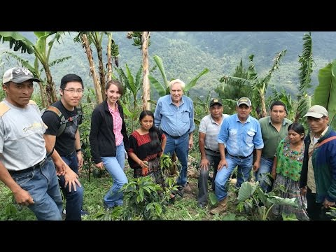 Recommendations and Process Improvements to Eradicate Rural Poverty for Farmers in Guatemala