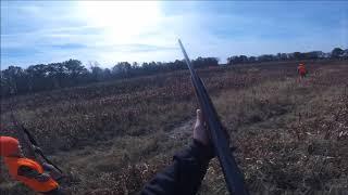 Hunter, Kodde, Brian, Shaun, Matt and Dustin, w/Skeeter and Remington, Upland Bird Hunt