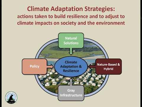 Ipswich Great Marsh Adaptation Plan