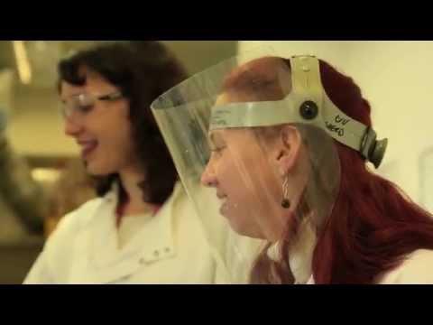 Bioengineering and tissue regeneration