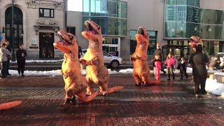 The T-Rex Shuffle  || ViralHog