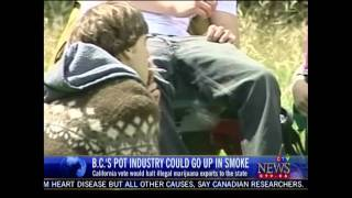 BC Bud Industry Worried about the Passage of Prop 19