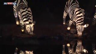 4 ملايين مصباح بحديقة دبي المتوهجة