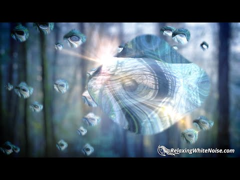 Rain Sounds For Sleeping   10 Hours   Get to Sleep Fast with Nature White Noise