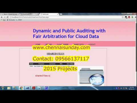 Dynamic and Public Auditing with Fair Arbitration for Cloud Data