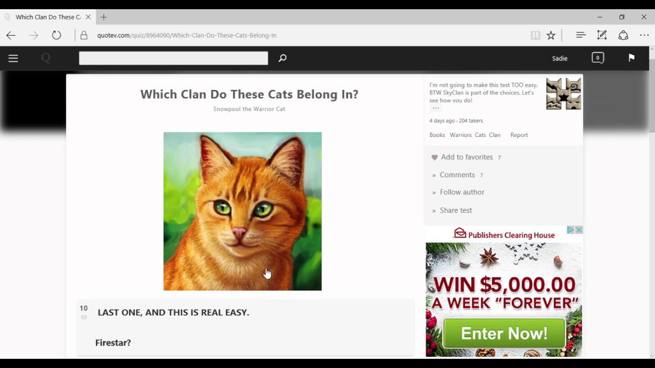 Warrior cat you quiz : Bitcoin visa card singapore