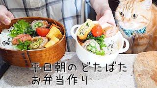 【料理動画59】お弁当作り~豪快オクラ肉巻き【English subtitles】【obento】