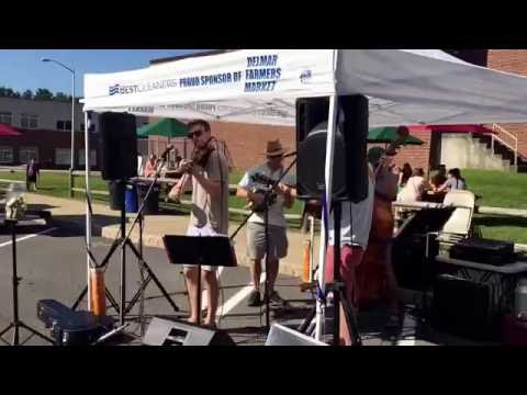 Blind Crow Band with fiddler Ryan Delaney 8/20/16 at Delmar, NY Farmers Market