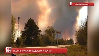 Лесные пожары в Тавде подошли к селам(Под Тавдой близ поселка Карьер спасатели продолжают бороться с огнем в лесном массиве. По счастью, угрозы..., 2016-05-19T06:45:37.000Z)