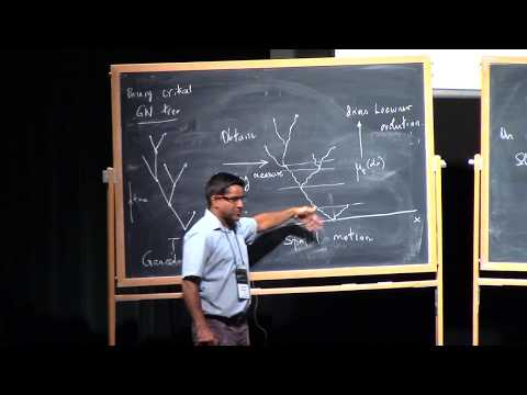 Govind Menon (1.2) Stochastic Loewner evolution with branching and the Dyson superprocess