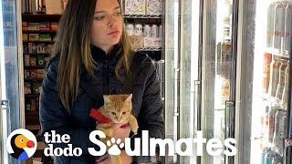 Little Rescue Kitten Is Basically A Baby! | The Dodo Soulmates