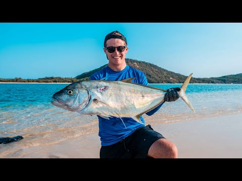 DOUBLE ISLAND SPEARFISHING, Deep Blue Water, Mahi Mahi, Magrove Jack ( Robinson Brothers ) Ep42