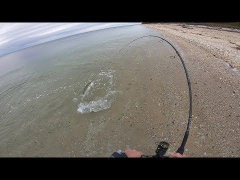 Underpriced Fishing Rod Series