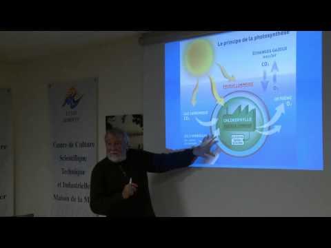 Petit peuple et grandes espèces planctoniques