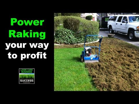 Power Raking, Dethatching Or Scarifying Lawns In Your Lawn Care Business