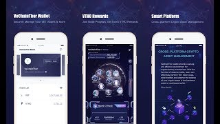 VeChainThor Wallet User Manual & X Node Binding & Token Swap Guide