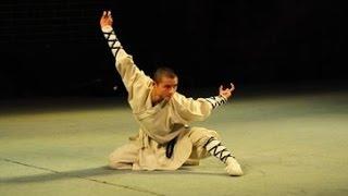 Shaolin Pictographic boxing象形拳(癩蛤蟆 ,螳螂,虎,鴨,鷹抓,蠍子)