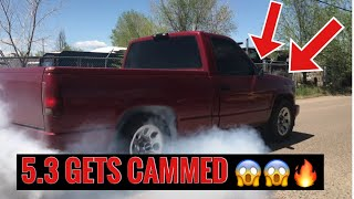 Installing a Texas speed cam in a 4.8 5.3 6.0 LS engine