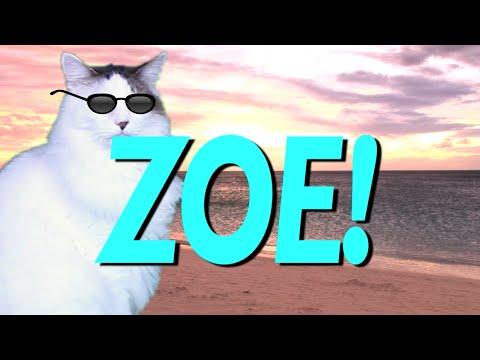 Happy Birthday Zoe Epic Cat Happy Birthday Song Youtube
