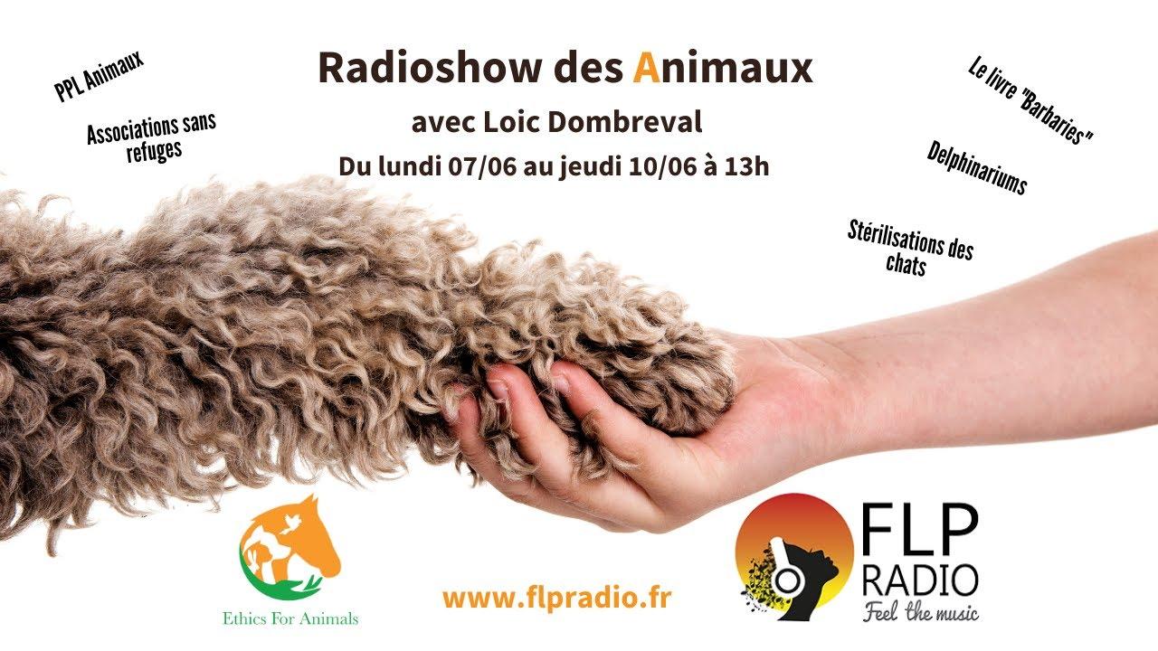 07/06/2021 - Interview de Loic Dombreval - FLP Radio