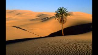 Let's start out on a desert journey searching for our oasis.