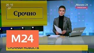 Смотреть видео Девять вокзалов столицы проверяют из-за угрозы взрыва - Москва 24 онлайн