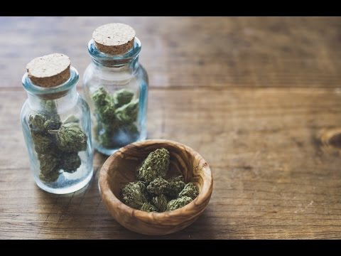 Legal Marijuana Causing Fewer Opioid Deaths And Big Pharma Is Mad