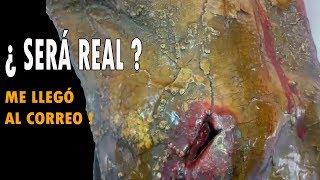 ¿ SERÁ REAL O ES UNA MENTIRA ? @OxlackCastro
