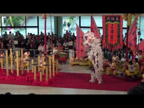 Best lion dance show ever! Hong Kong chinese new year 2010 by Sifu Sergio