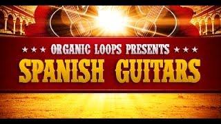 Acoustic Spanish Guitar - Organic Loops Pres Spanish Guitar