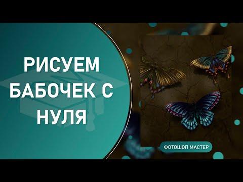 Рисуем бабочек с нуля в Photoshop. Спидарт