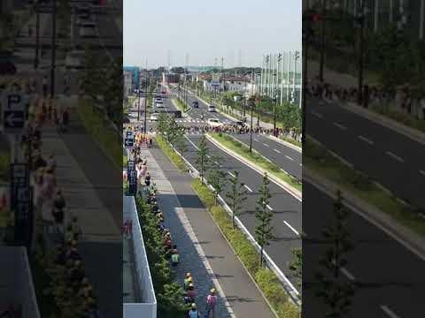 日本小学生上学路之过大马路