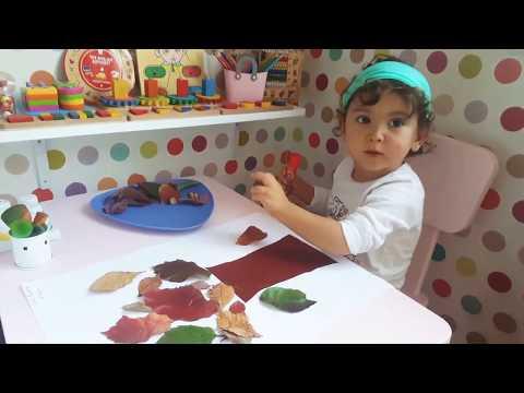 Dila öztürk ile Okul öncesi etkinlik | Sonbahar çalışması 🍁 | Montessori etkinlikleri