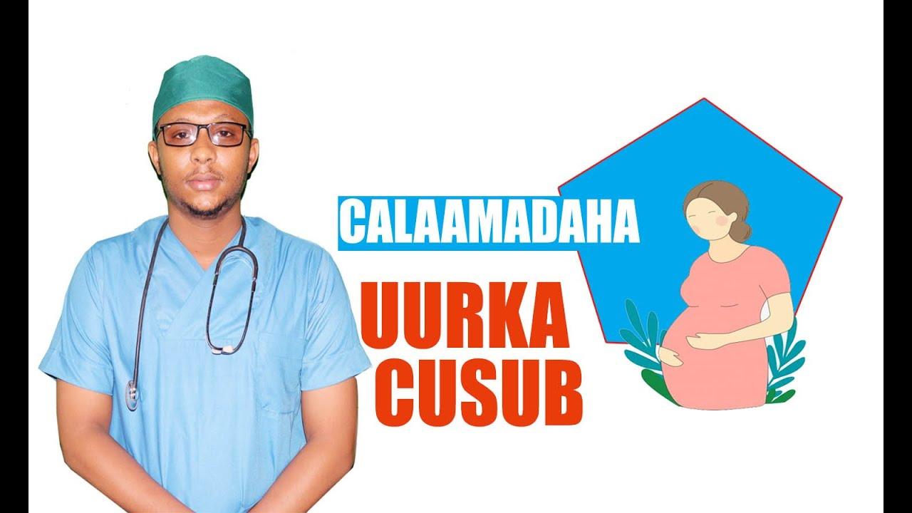 Download CALAMADAHA LAGU GARTO UURKA CUSUB