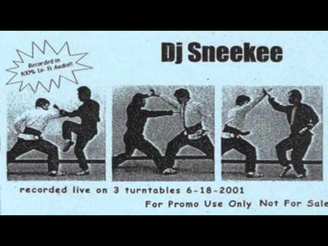 Sneekee Dj  - The Dao of Sneekee v6 Jungle / Drum and Bass / Hip Hop Mashup DJ Mix